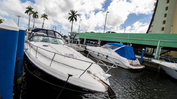 Sea Ray Sundancer 360
