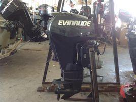 Evinrude E15HTGL