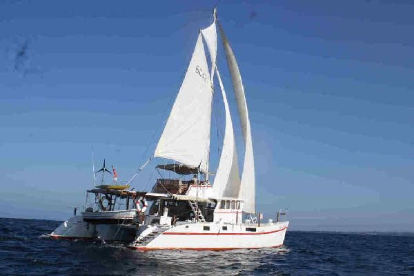48FT Flybridge Motorsailer-Catamaran  - main image