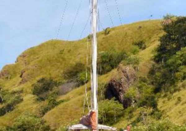 48FT Flybridge Motorsailer-Catamaran  image