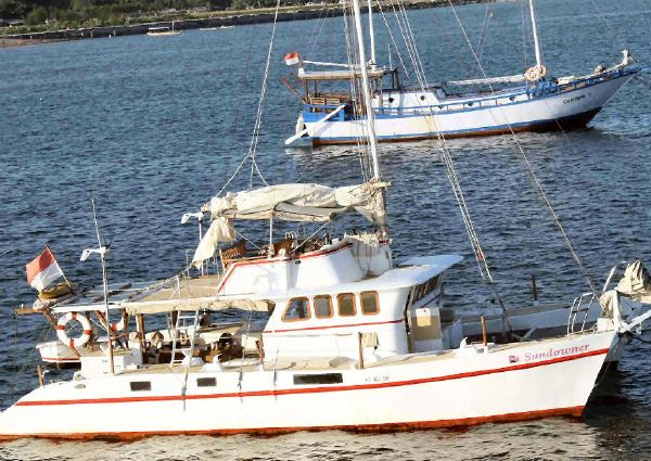 48FT Flybridge Motorsailer-Catamaran  image