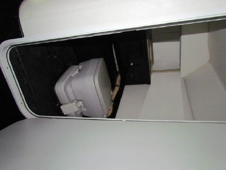 Wellcraft Scarab II Fittipaldi image