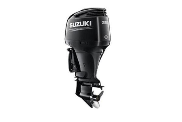 Suzuki DF250AP - main image