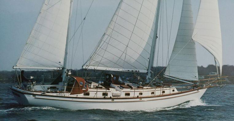 1983 Shannon