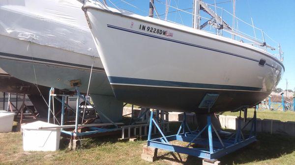 Catalina 310