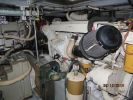 Mainship 430 Trawlerimage