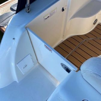 Sea Ray 260 image