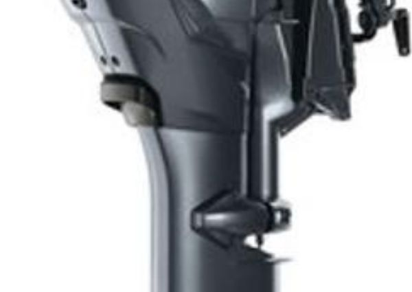 Yamaha Outboards F25LC image