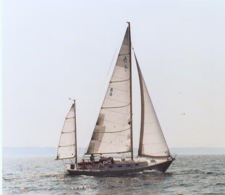 1999 Alerion