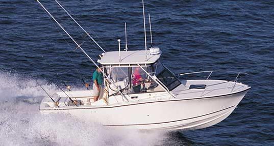 Carolina Classic 25 image