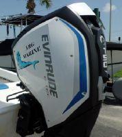 Evinrude E-TEC G2 150hp  25