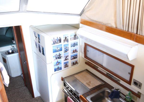 Bertram 42 Convertible image