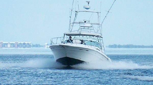 Sea Ray 400 EXPRESS with Tower