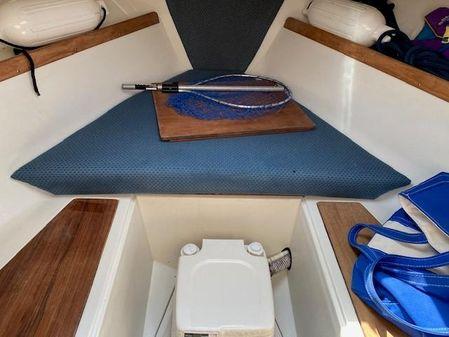 Limestone Express Cruiser image