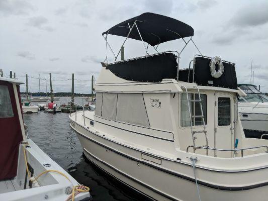 Camano 31 Trawler - main image