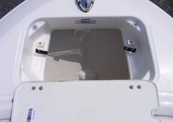 Chaparral 21 H2O Sport image