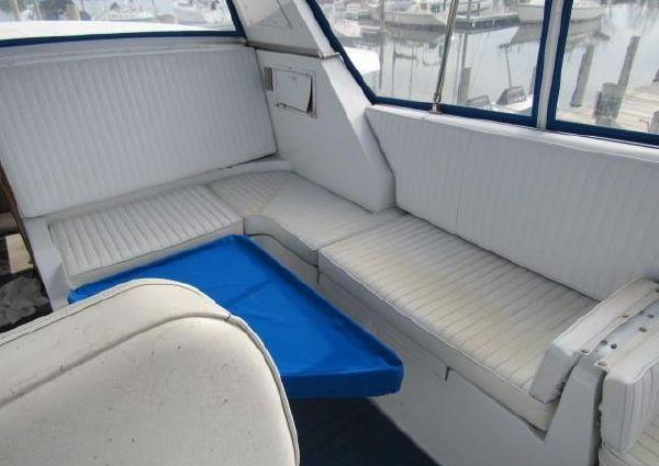 Present Yachts Sundeck 46 image