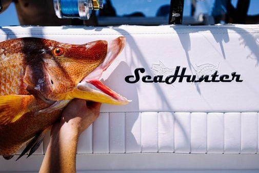 SeaHunter 39 image