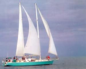 1996 Treworgy Steel Passenger Schooner - USCG Certified for 42 Day Pass   19 Pass Overnight For Sale Purchase
