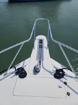 Viking 45 Convertible image