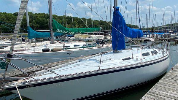 Sailboat MSY 38