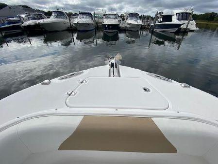 Edgewater 262CC image