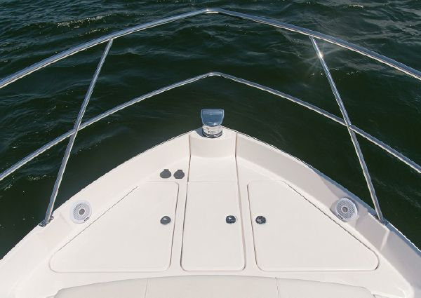 Regal 42 Fly image