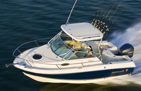 2017 Wellcraft 220 Coastal