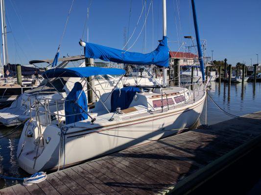 Catalina  - main image