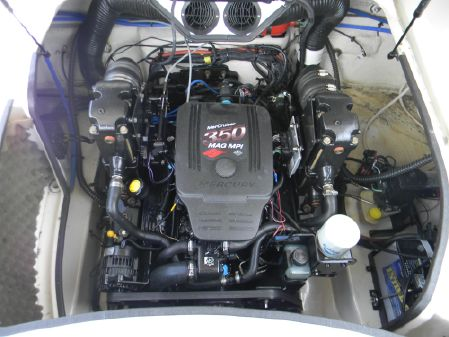 Sea Ray 260 Sundeck image