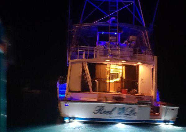 Striker 70 Sports Fish image