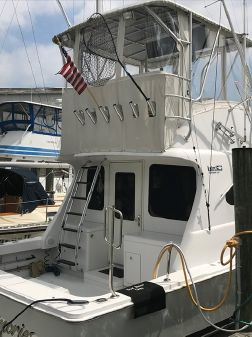 Luhrs 38 image